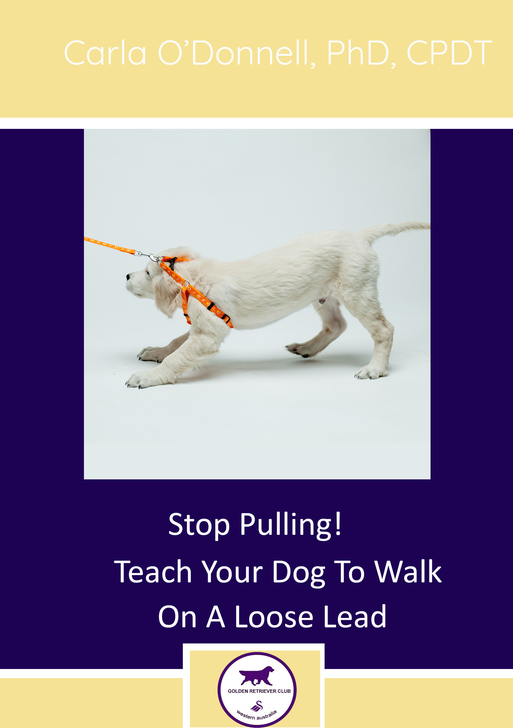 Stop Pulling! Teach Your Dog To Walk On A Loose Lead